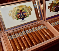 zOutlaw - Foundation Cigars - 17 (8)